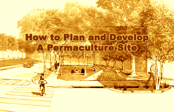 how to develop site2