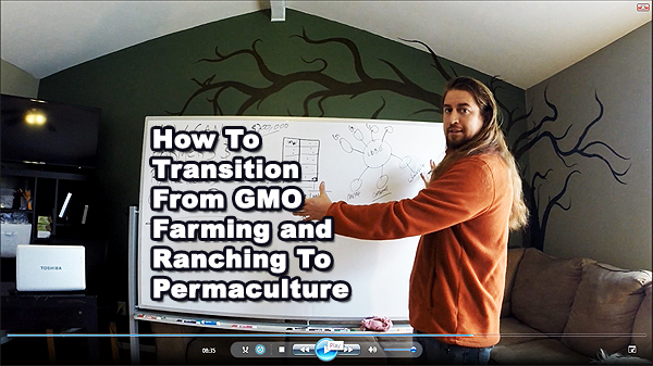 how to transition from gmo farming