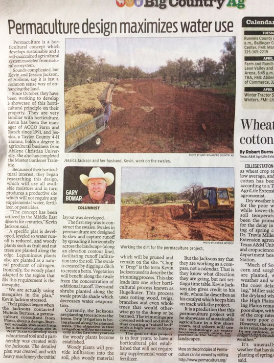 permaculture in the paper1