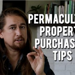 6 property purchasing tips1