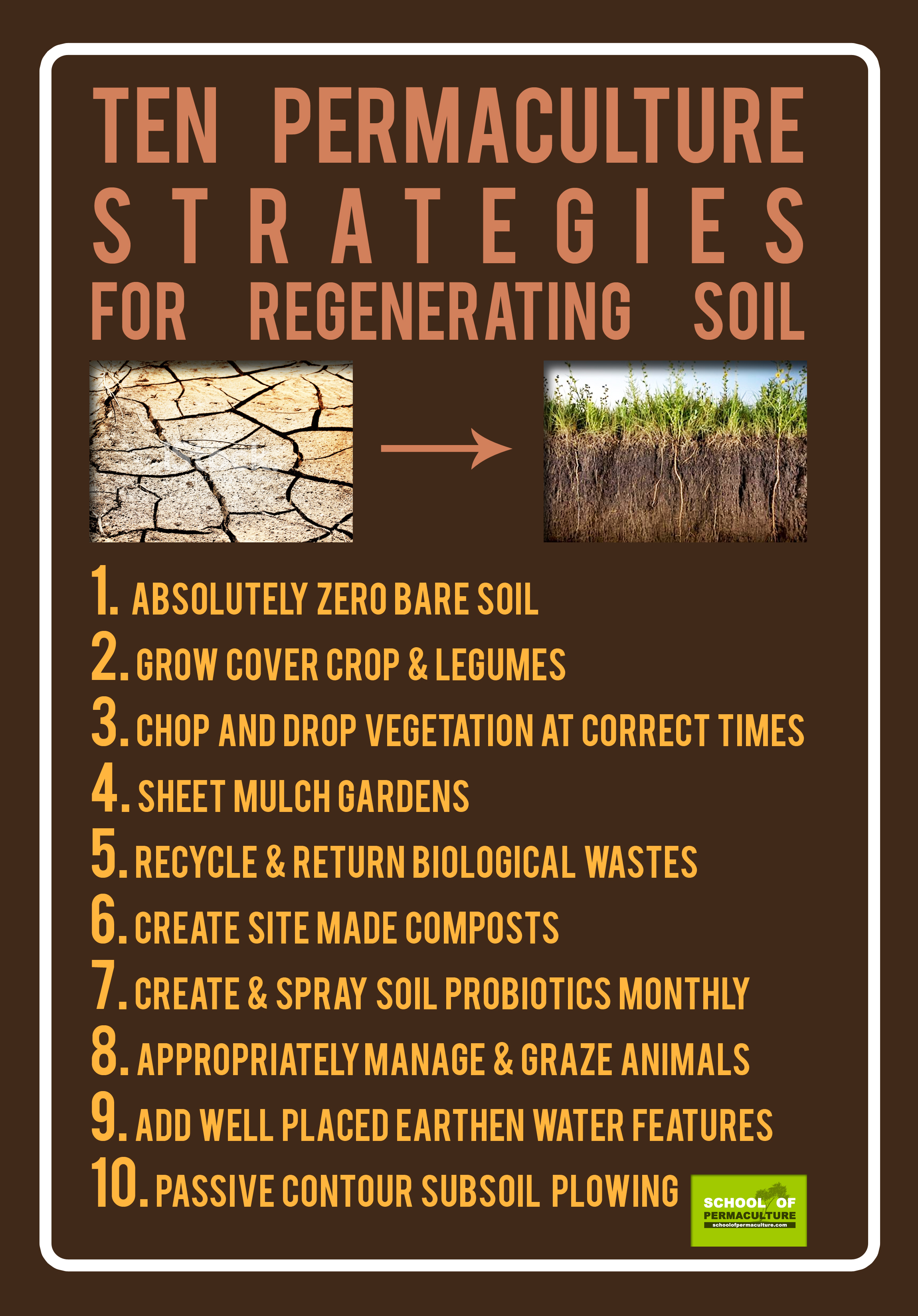 10-soil-strategies-copy