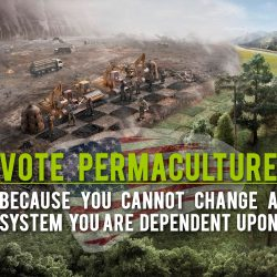 vote-permaculture-meme-copy
