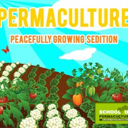 growing peaceful sedition copy