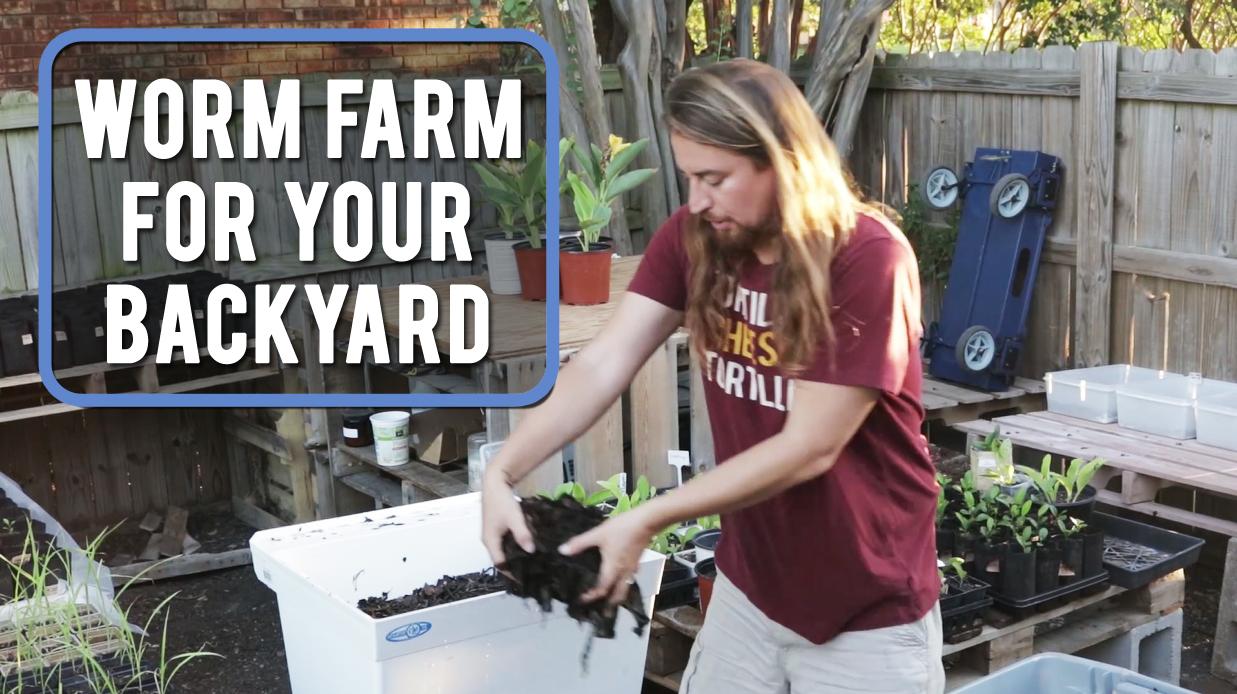 backyard worm farm part 18 15 diy how to make your backyard